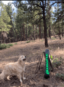 Summit skiboards with mascot
